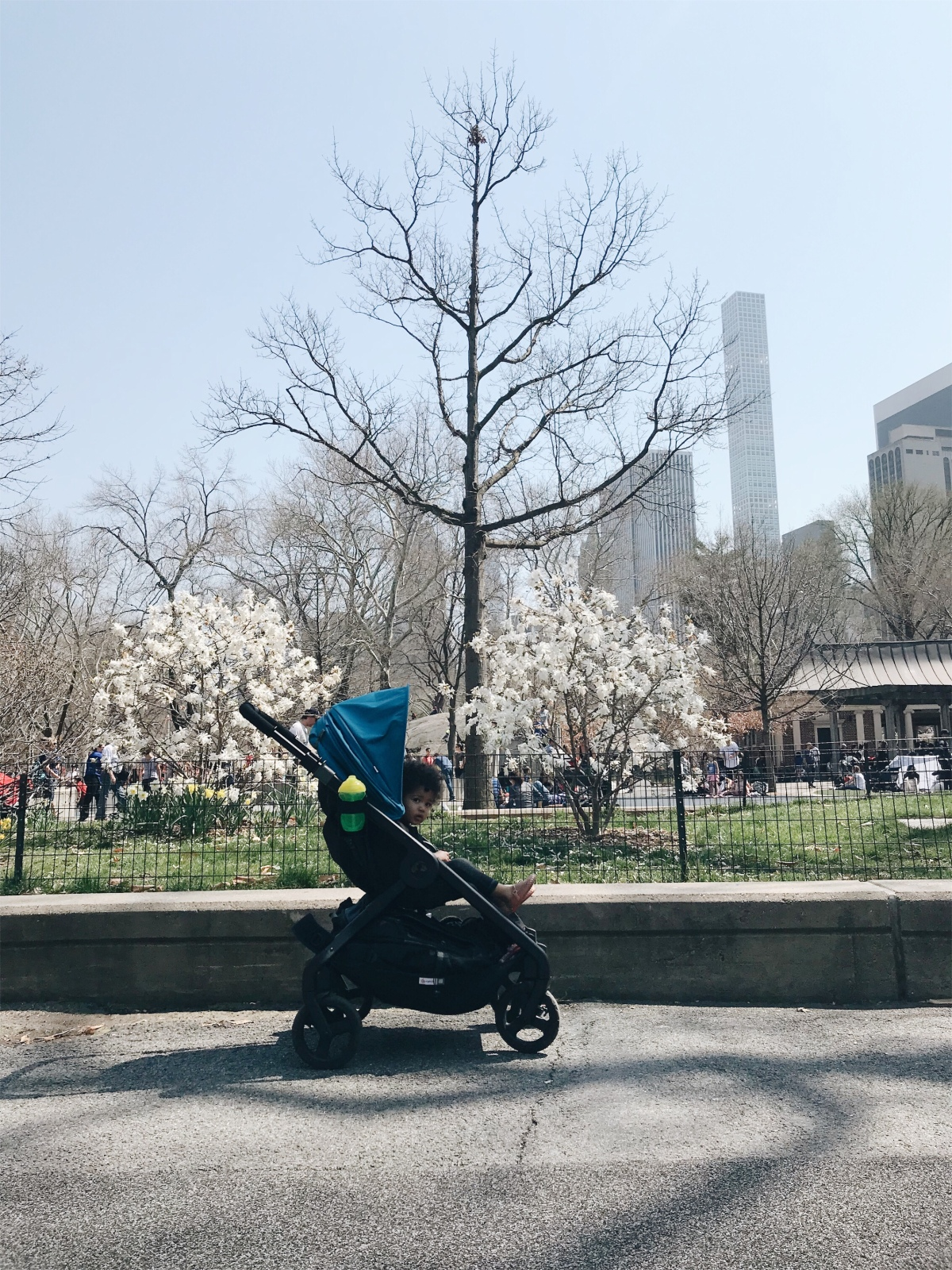 A Day in NYC with my Ergobaby 180 ReversibleStroller